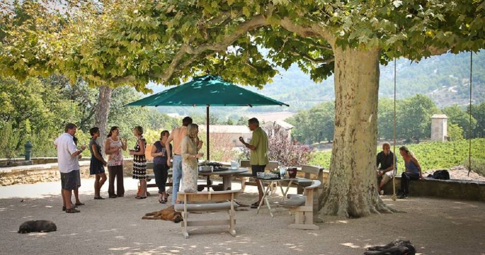 Accord gourmand vin & fromage au château Unang@Château Unang