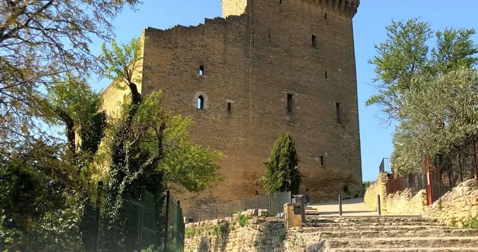 Visites guidées de l'été : Châteauneuf-du-Pape@Office de Tourisme du Pays Réuni d'Orange