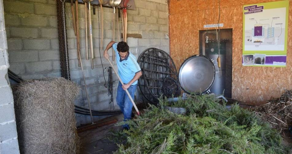 Visite de la distillerie Aroma'plantes@Aroma'plantes