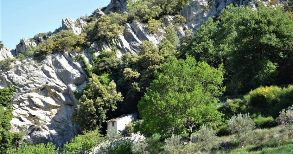 Randonnée pédestre - Le Groseau et le Vallon des Gipières@OTI Ventoux Provence