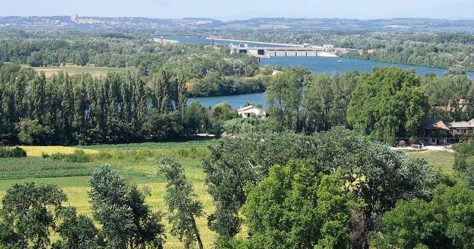Balade de l'île de la Barthelasse - à vélo@France Olliver_Coll. Avignon Tourisme