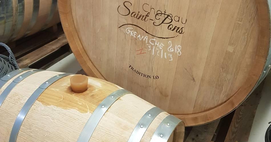 Visite des chais et dégustation au Château Saint Pons@Coll. VPA / S. Maisonnave