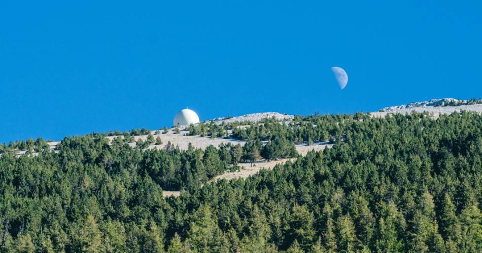 Cyclisme : Ascension du Mont-Ventoux depuis Malaucène@Thomas O'Brien
