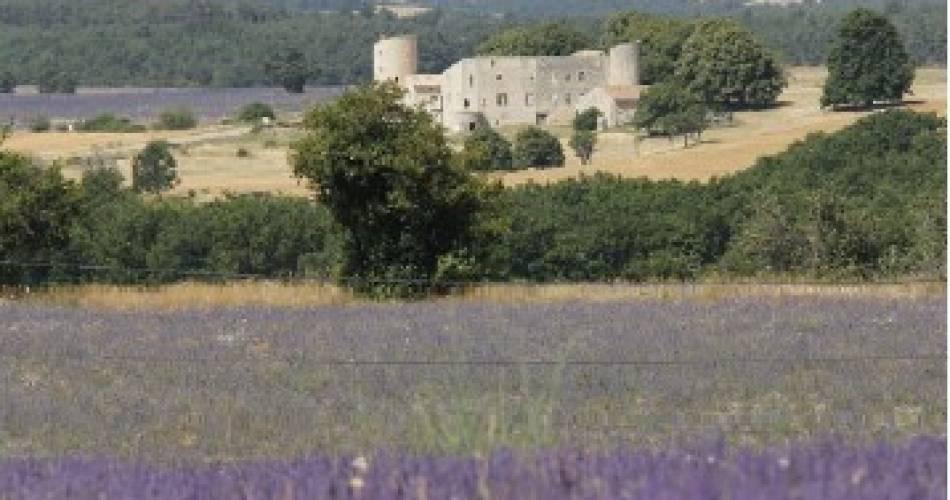 Le Château de la Gabelle@Blanc