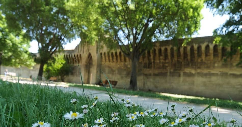 Rampart ride@©Ville d'Avignon