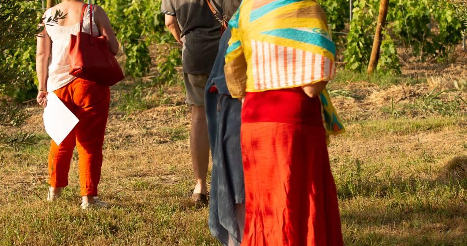 Walk through the heart of the vineyards@Domaine de Mas Caron