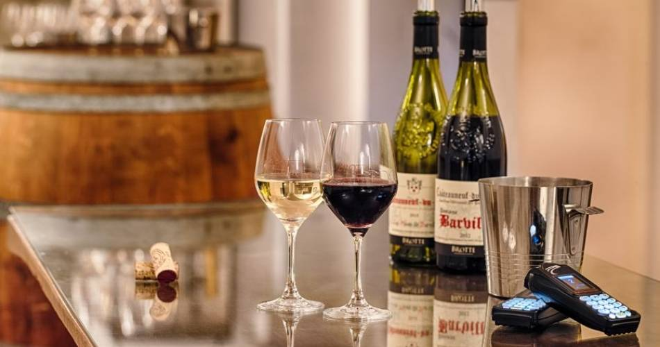 Food and wine pairings at the Wine Museum - Maison Brotte@©thomasobrien