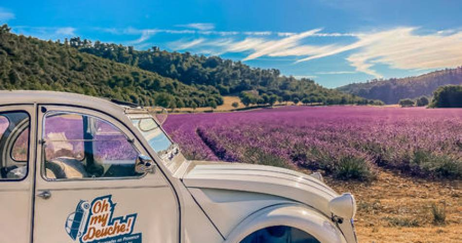 Oh my Deuche, location 2cv - balades en Provence@Oh my Deuche, location 2cv et escapades en Provence