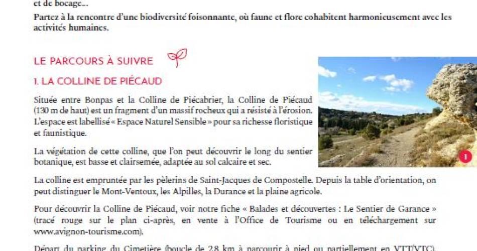 Balade & Découverte - Le sentier de Garance@@OT Grand Avignon