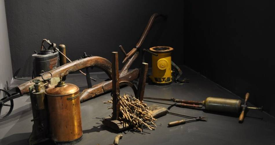Visite Guidée du Musée & Dégustation Prestige@©maisonbrotte