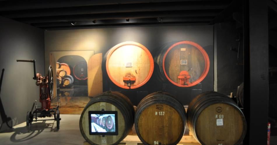 Tour of the wine cellar and prestige tasting@©thomasobrien