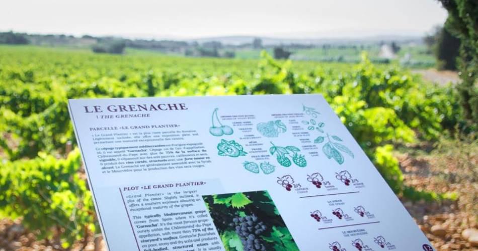 Escapade viticole au Château Fortia@®Château Fortia