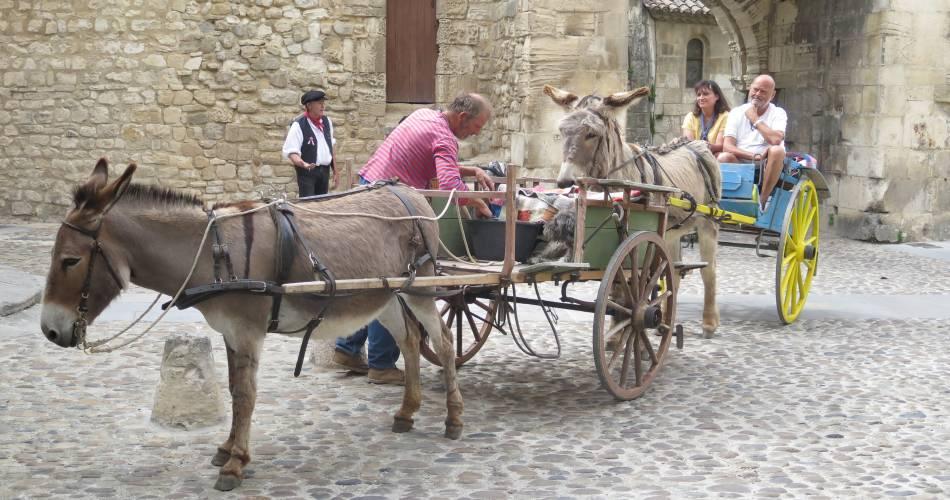 Balades en calèche avec des ânes attelés@Oti Porte du Ventoux