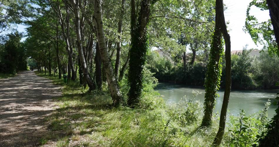 Balade sur les berges de l'Ouvèze, à Sorgues@Service communication CCSC
