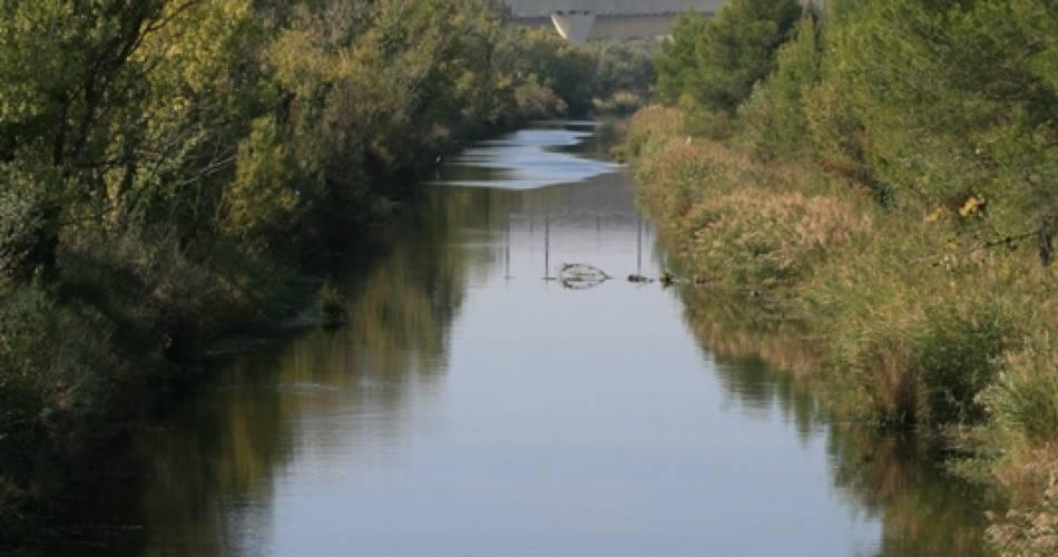 Randonnée pédestre et vélo - Sur les berges du canal de Vaucluse en Avignon@©DR