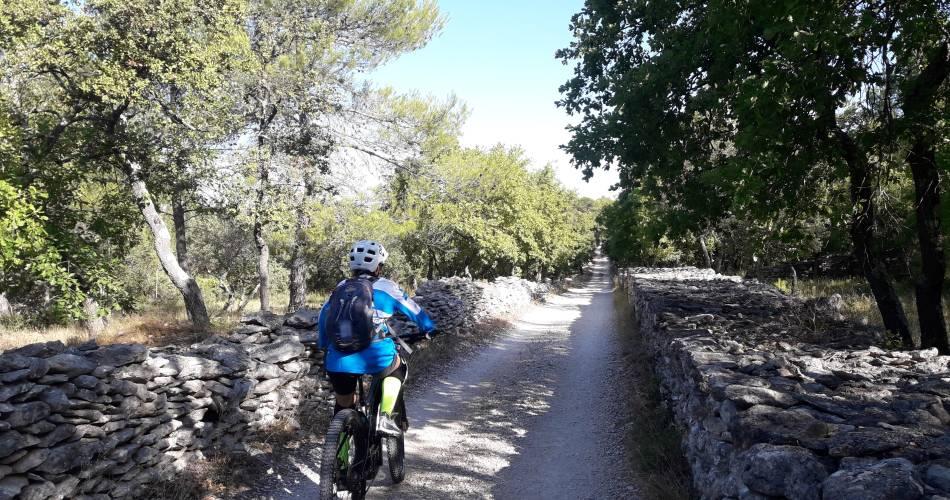 VTT n°47 - Du Calavon au Col de Gordes@Eric Garnier