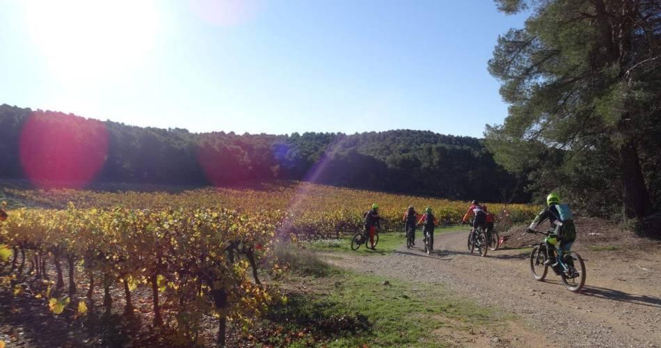 VTT n°30 - Entre vignes et oliviers@Droits réservés