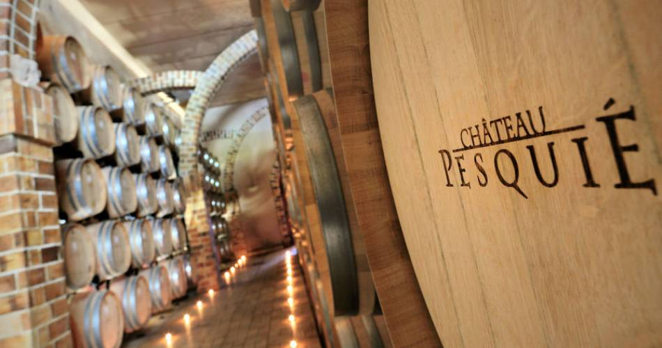 Guided visit of the cellars and tasting at Château Pesquié@Celine Audibert