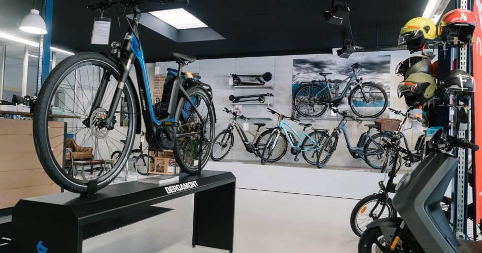 Dynamo Cycles@Dynamo Cycles