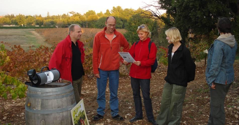 Audio-tour cave et vigne au Domaine de Marotte@Domaine de Marotte