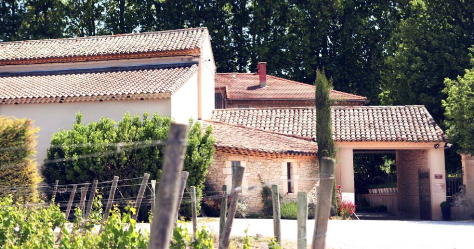 Cellar visit and tasting at Domaine de la Fourmone@Domaine de la Fourmone