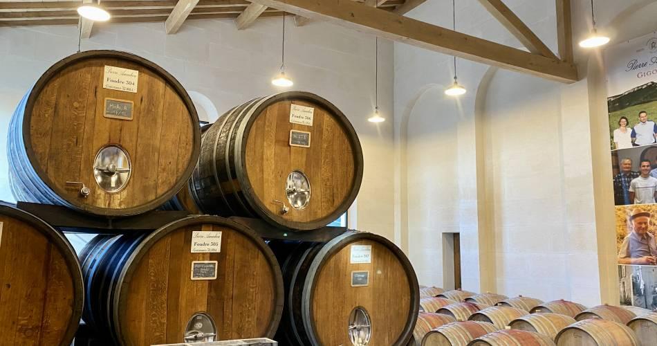Visite culturelle de Gigondas et dégustation de vin au Domaine Amadieu@Amadieu