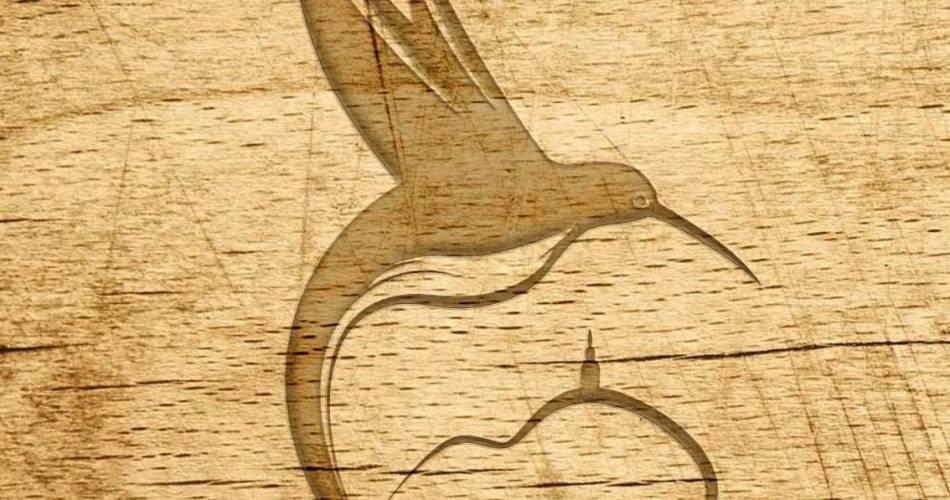 Visite du vignoble du Domaine du Colibri@Domaine du Colibri