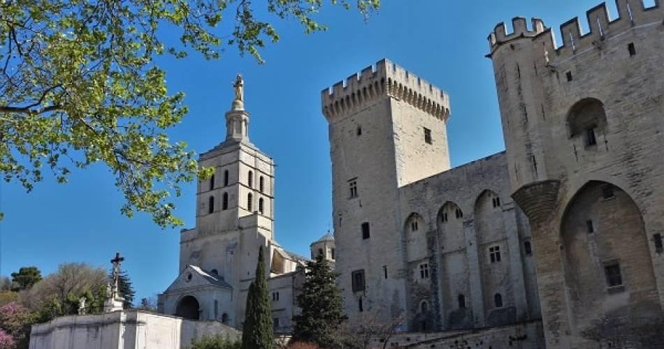 Autour du Palais - découvrir l'histoire d'Avignon@©Les noctambules d'Avignon