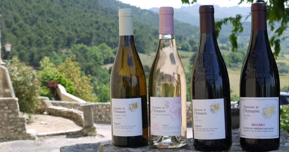 Visite du vignoble au domaine de l'Amauve@Domaine de l'Amauve