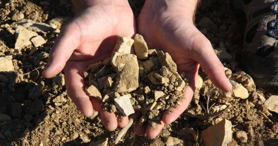 Visite et dégustation au domaine Champ-Long@Domaine Champ-Long