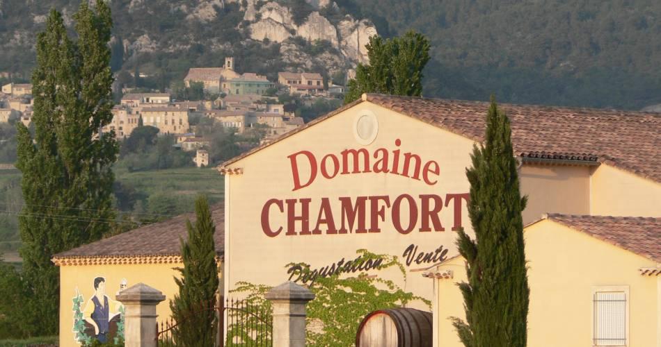 Visite de la cave et dégustation au domaine Chamfort@Domaine Chamfort