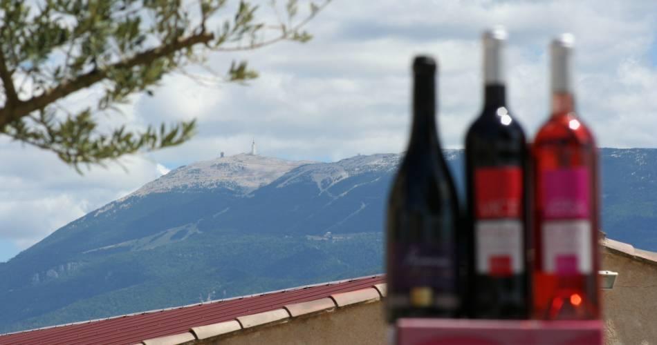 Visite du vignoble et de la cave avec dégustation au domaine Bernard@Domaine Bernard