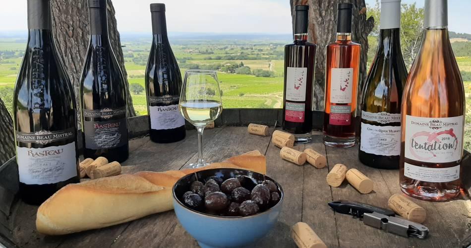 Visite du vignoble et de la cave du domaine Beau Mistral@Domaine Beau Mistral