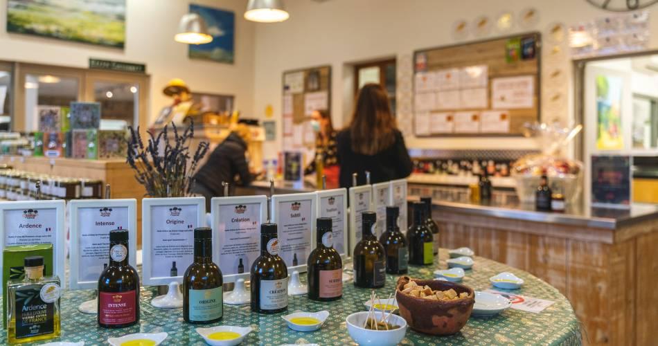 Visite de l'oliveraie de la Bastide Du Laval@Luberon Sud Tourisme