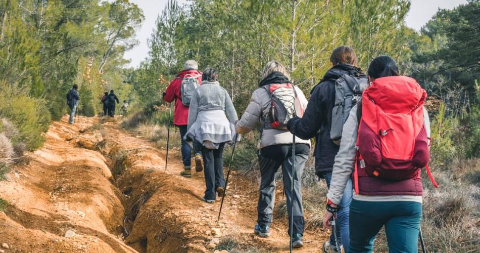 Marche Nordique, balade avec Airfit Provence@Luberon Sud Tourisme