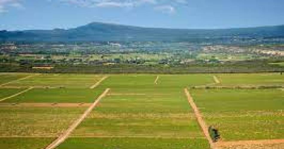 Aventure à travers vignes et collines@@office de tourisme Grand Avignon