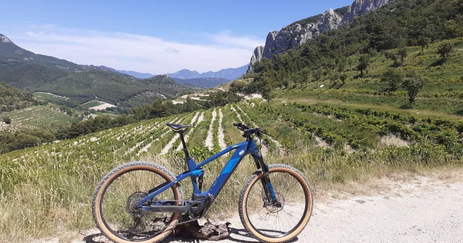 Balade accompagnée à vélo et dégustation à Gigondas LaCave@Gigondas laCave