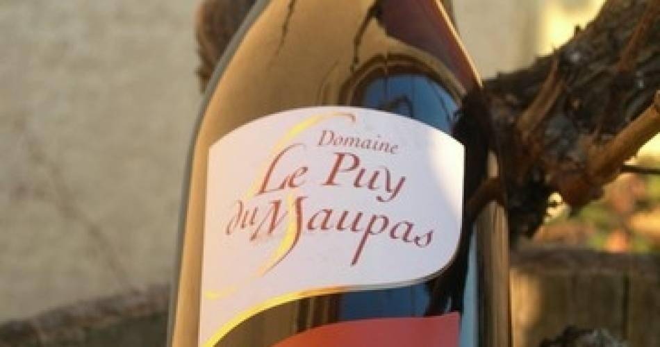 Domaine Le Puy du Maupas@