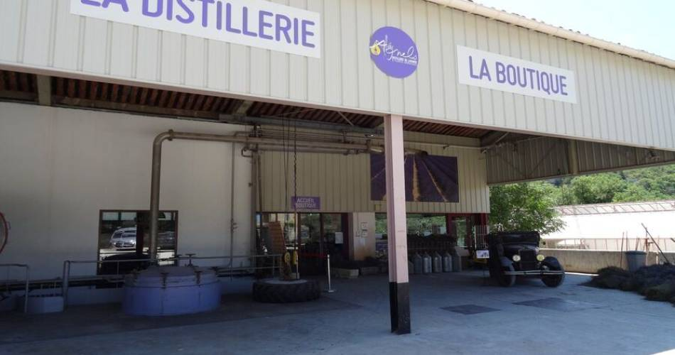Les Agnels - Lavender and aromatic plant distillery@©fabiosalvaterra