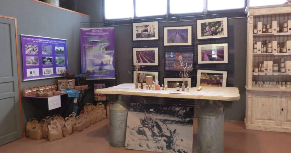 Les Agnels - Lavender and aromatic plant distillery@OTI Pays d'Apt Luberon