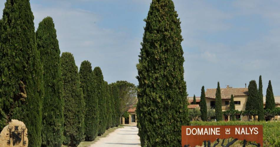 Private tour of the Château de Nalys@Nalys
