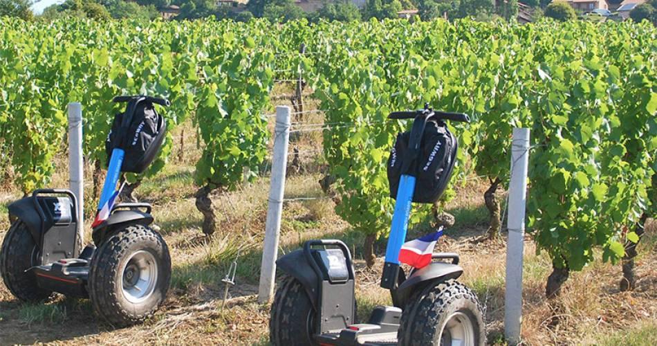 Wine tourism at Domaine Condorcet@©Domaine Condorcet