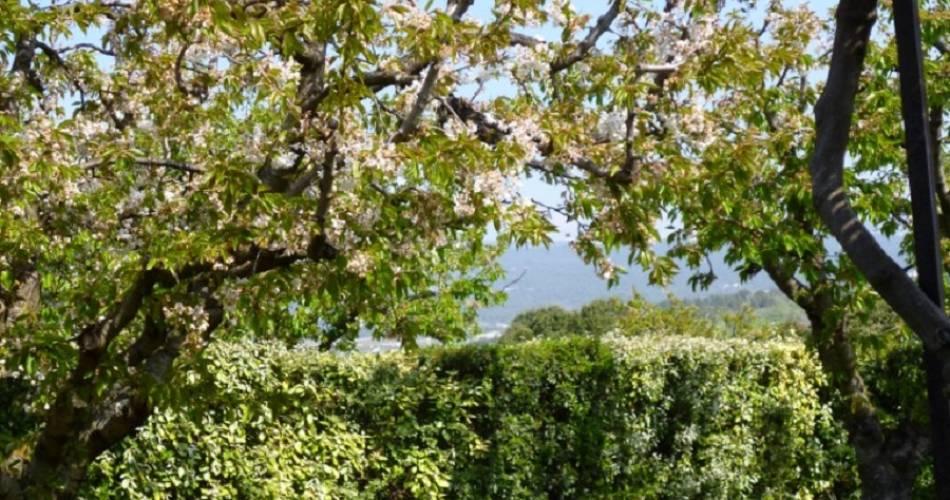 Les Cerisiers - Domaine des Finets@Maurice Gauffridy