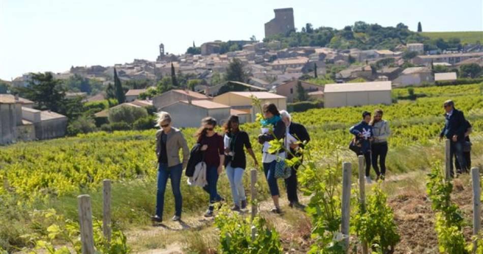 Escapade au coeur du vignoble de Châteauneuf-du-Pape@©Sentier SRG