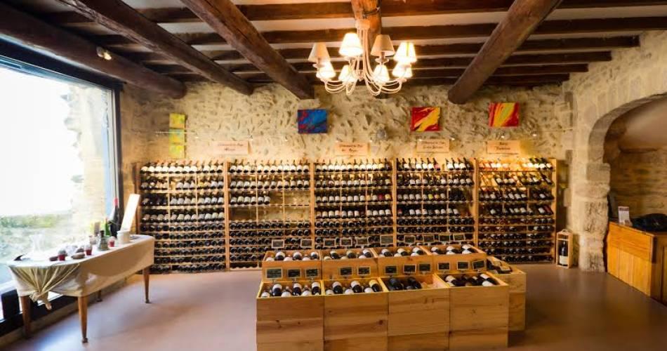 Vinadéa Maison des Vins - Atelier de dégustation@Vinadéa Maison des Vins
