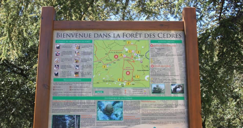 La forêt des cèdres du Petit Luberon@Coll. VPA / A. Hocquel