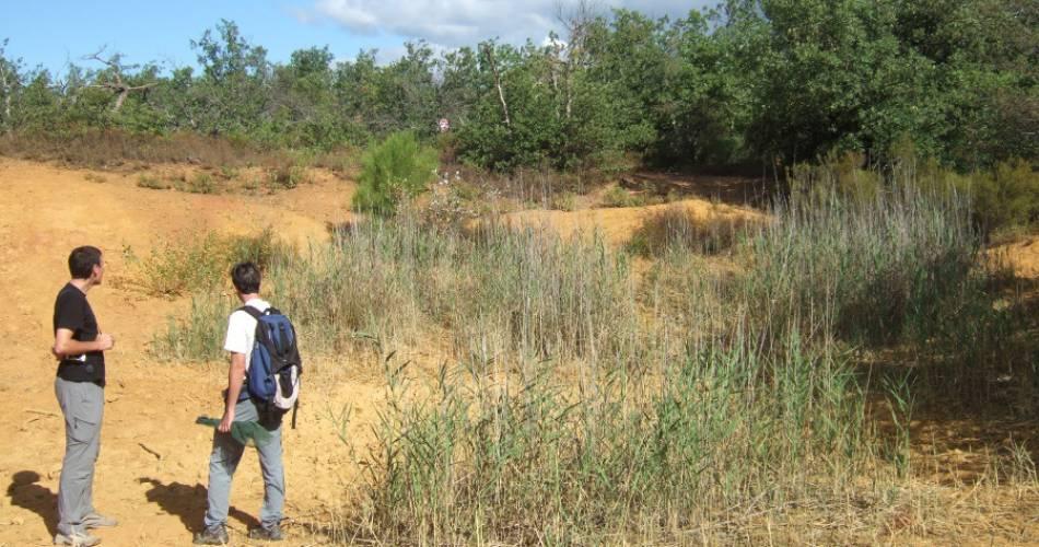La Bruyère hill discovery trail@Département de Vaucluse