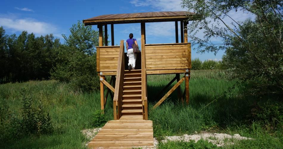 Les Confines wetlands discovery trail and observatories@Conseil départemental de Vaucluse