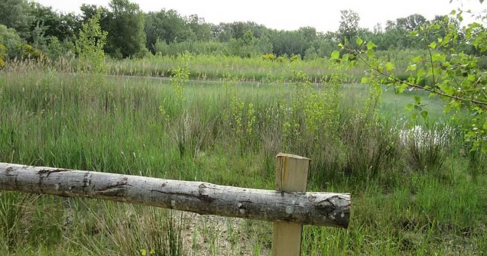 Discovery trail at the Belle-Île wetlands@Conseil départemental du Vaucluse