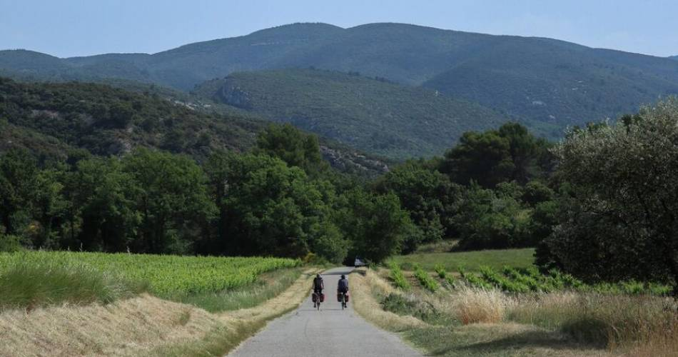 V863 - Around the Luberon by bike@Pascale Desclos